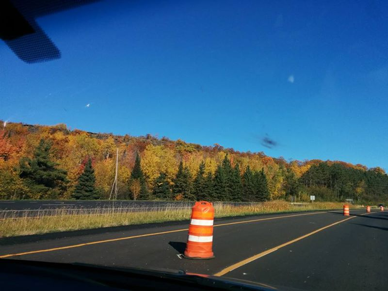 Fall colors in northern MN